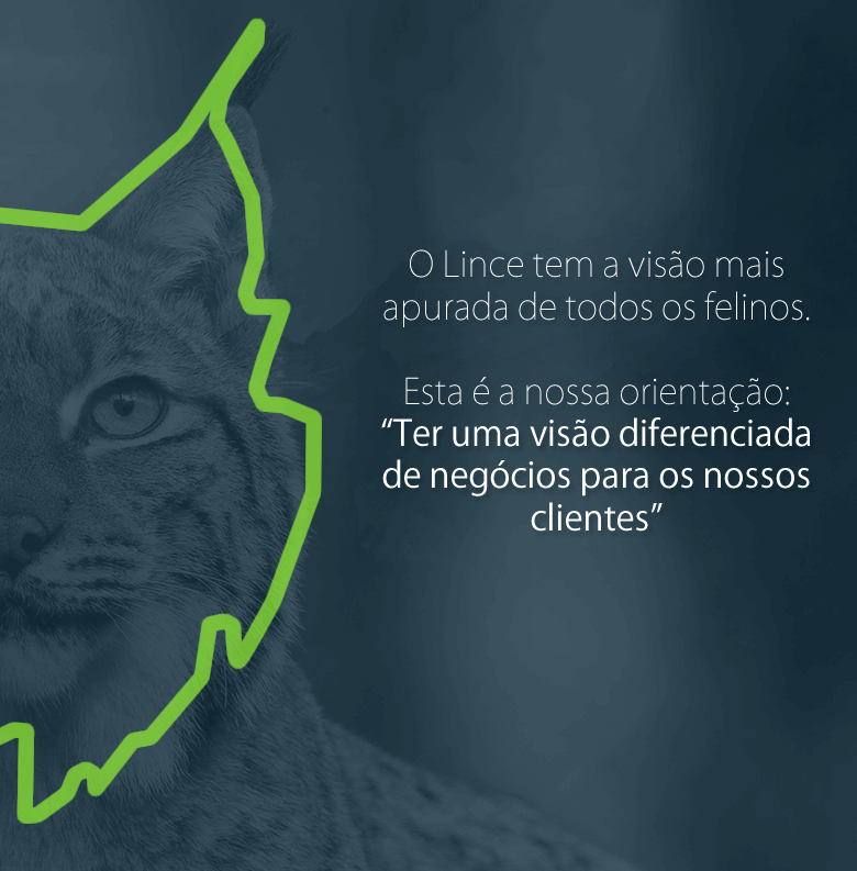 marketing-digital-para-empresas-campinas
